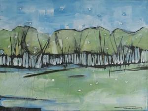 Spring Snow Treeline by Tim Nyberg