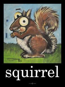 Squirrel Poster by Tim Nyberg