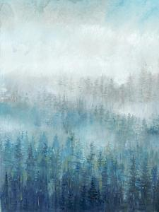 Above the Mist I by Tim O'toole