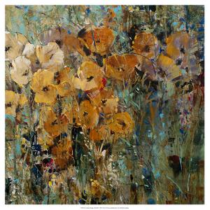 Amber Poppy Field II by Tim O'toole