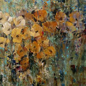 Amber Poppy Field II by Tim O'toole