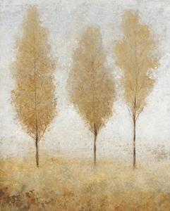 Autumn Springs I by Tim O'toole