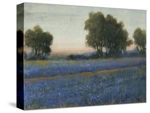 Blue Bonnet Field II by Tim O'toole