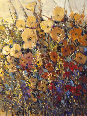 Bright and Bold Flowers II by Tim O'toole