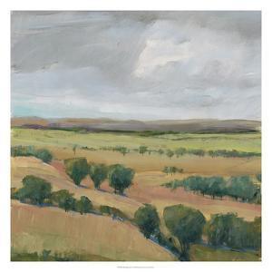 Brooding Storm I by Tim O'toole