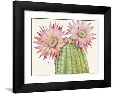 Desert Blossoms II