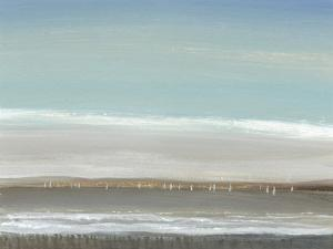 Distant Coast I by Tim O'toole
