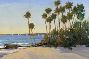 Distant Shore I by Tim O'toole