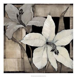 Dramatic Lily Grid II by Tim O'toole