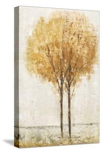 Falling Leaves I by Tim O'toole