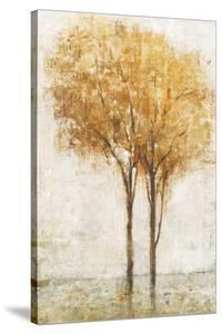 Falling Leaves II by Tim O'toole