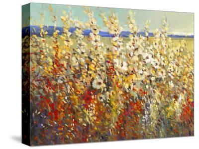 Field of Spring Flowers II by Tim O'toole