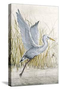 Heron Sanctuary I by Tim O'toole