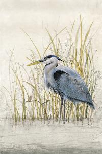 Heron Sanctuary II by Tim O'toole