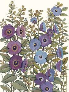Hollyhocks in Bloom I by Tim O'toole