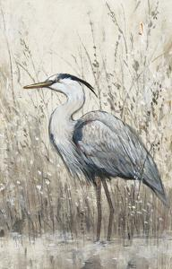 Hunt in Shallow Waters II by Tim O'toole