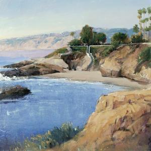 La Jolla Shore by Tim O'toole