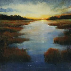 Low Land Reflection by Tim O'toole