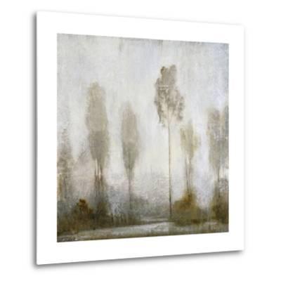 Misty Marsh II