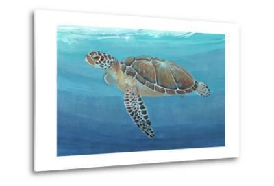 Ocean Sea Turtle II