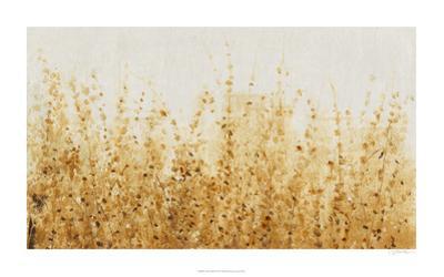 Ochre Fields II by Tim O'toole