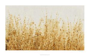 Ochre Fields II by Tim O'toole