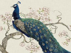 Peacock and Blossoms II by Tim O'toole