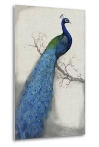 Peacock Blue I by Tim O'toole