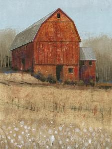 Red Barn View I by Tim O'toole
