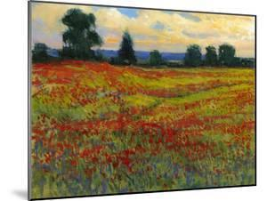 Red Field I by Tim O'toole