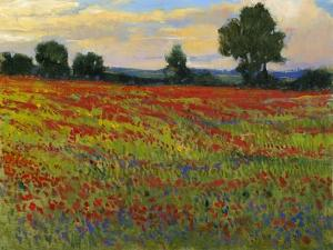 Red Field II by Tim O'toole