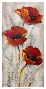 Red Poppies on Taupe II by Tim O'toole