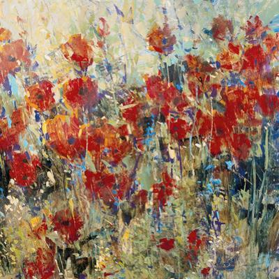 Red Poppy Field II by Tim O'toole