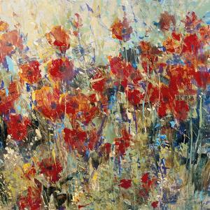 Red Poppy Field II by Tim O'toole