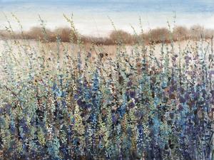 Seasons End by Tim O'toole