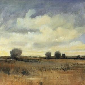 Sky View II by Tim O'toole