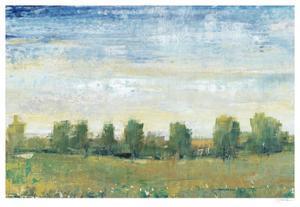Splendor in Spring II by Tim O'toole