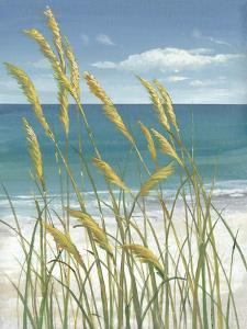 Summer Breeze I by Tim O'toole
