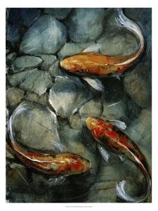Tres Koi I by Tim O'toole