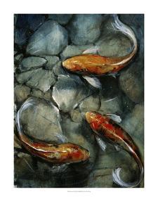 Tres Koi I by Tim O'toole