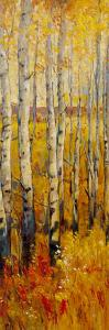 Vivid Birch Forest II by Tim O'toole