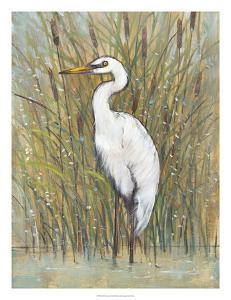 White Egret I by Tim O'toole