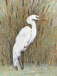 White Egret II by Tim O'toole