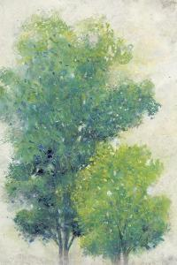 A Pair of Trees I by Tim OToole