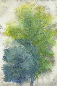 A Pair of Trees II by Tim OToole