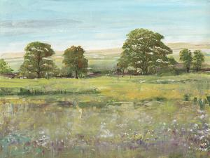 Abundant Spring II by Tim OToole