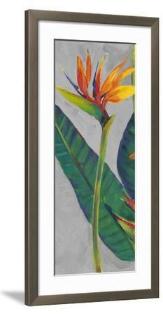 Bird of Paradise Triptych I