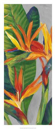 Bird of Paradise Triptych II