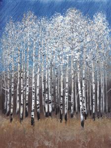 Cobalt Birches II by Tim OToole