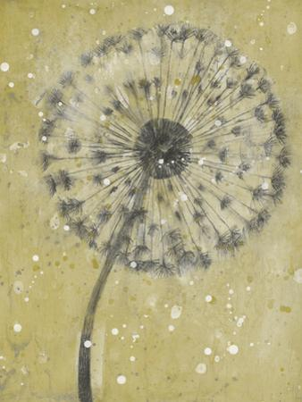 Dandelion Abstract I by Tim OToole